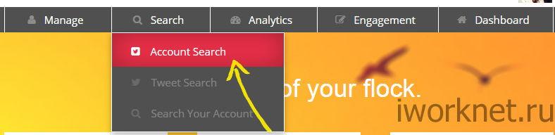 Поиск аккаунтов в ManageFlitter