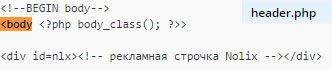 Код Ноликса перед тегом <body>