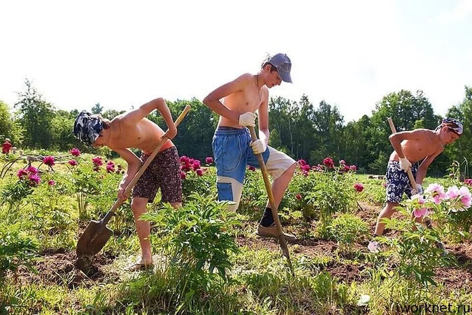 подросток работает в саду